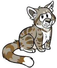 Andean Cat.png