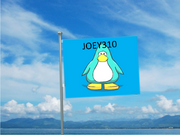 My very own flag.png