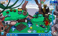 Igloo as of medivial party 2013