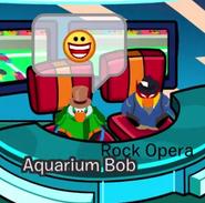 Aquarium y rock