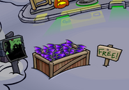 Purple Bat WIngs As Free ittem