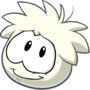 Operation Puffle Post Game Interface Puffe Image White