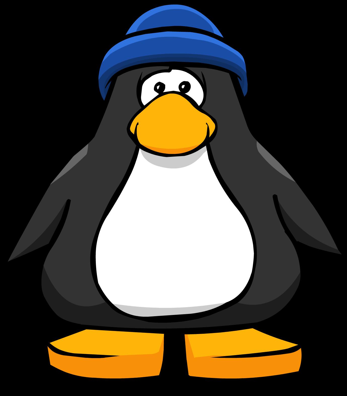 Blue Toque (ID 1211)