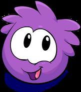 PurplePuffle5