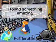 Puffleruffle 1