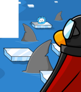 Puffle Rescue- Ice Floes card image