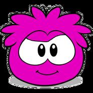 Magneta puffle