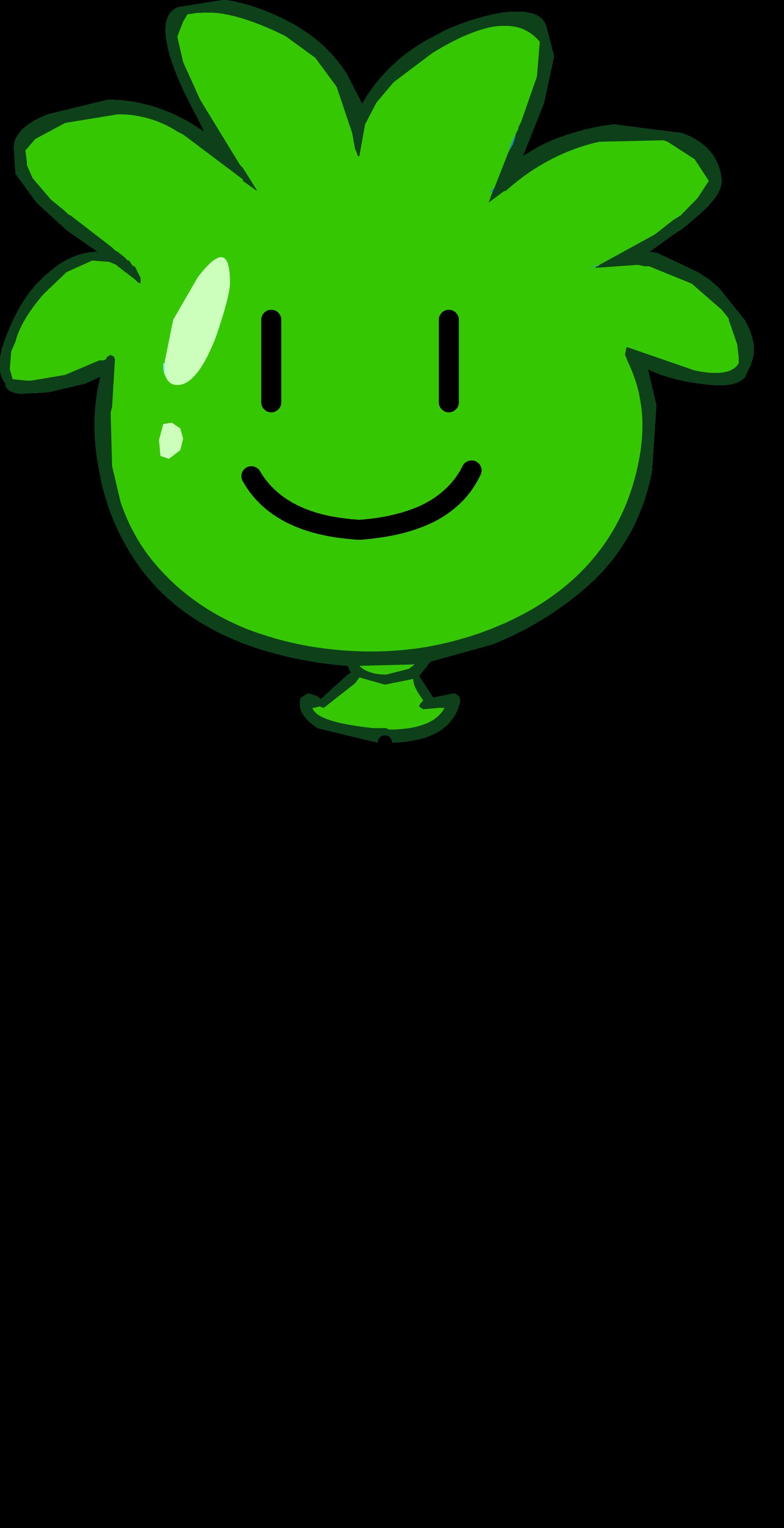 Globo de Puffle Verde