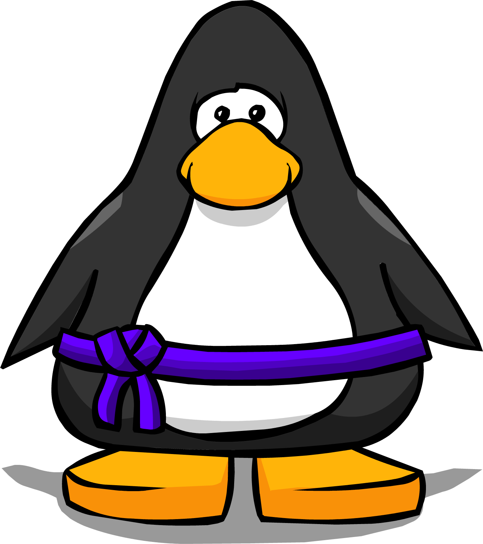 Purple Ninja Belt