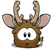 Reindeer Puffle Starving
