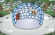Forest Location with igloo