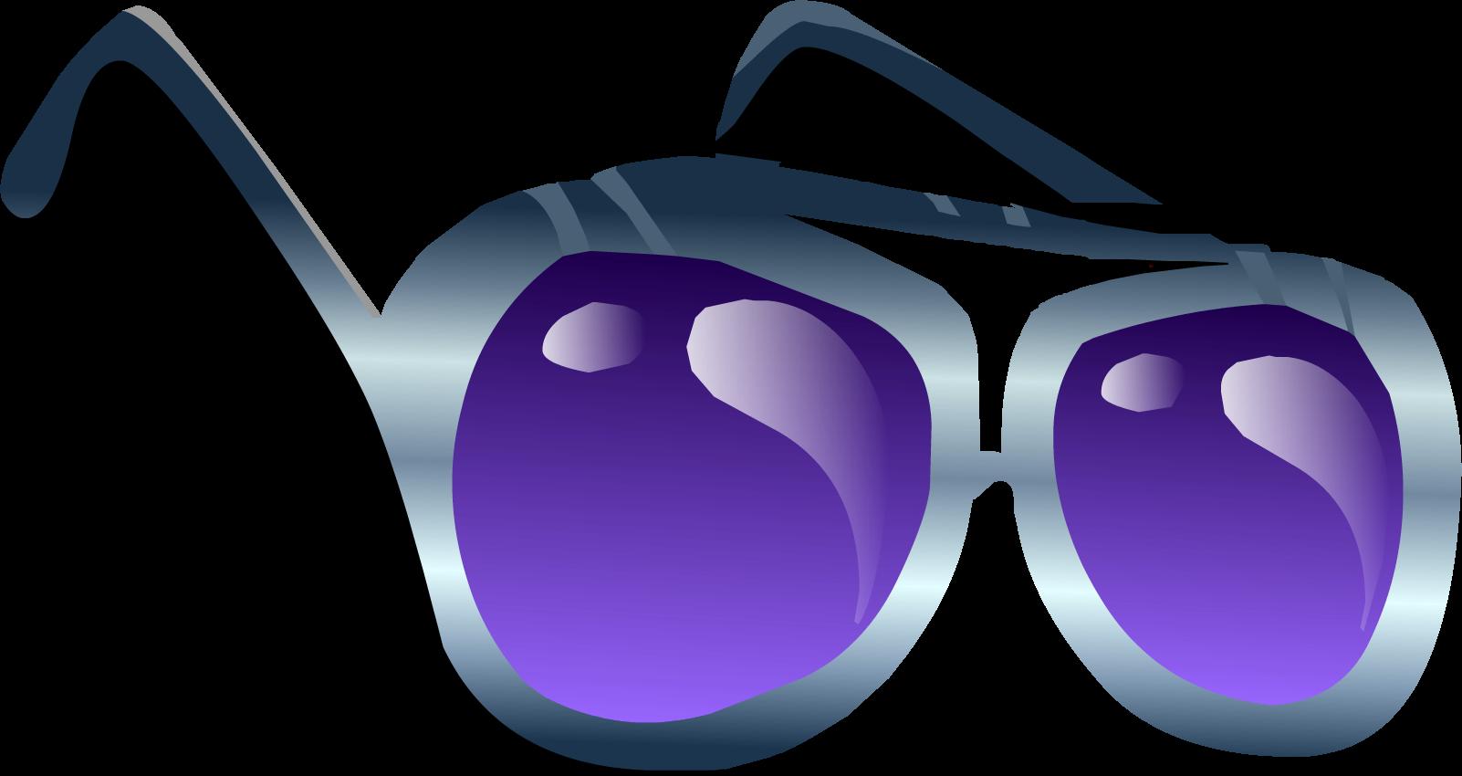 Indigo Sunglasses