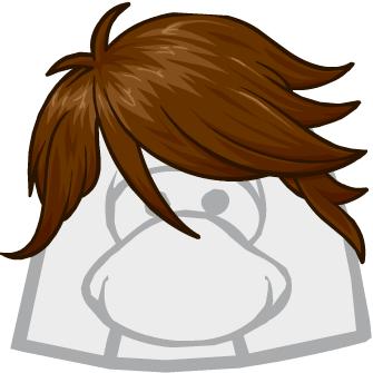Peinado Barrido de Costado