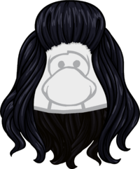 Cabello de pájaro negro icono.png