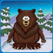 Nice Bear