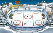 Puffle discovery Ice Rink