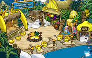 10th Anniversary Party Cove