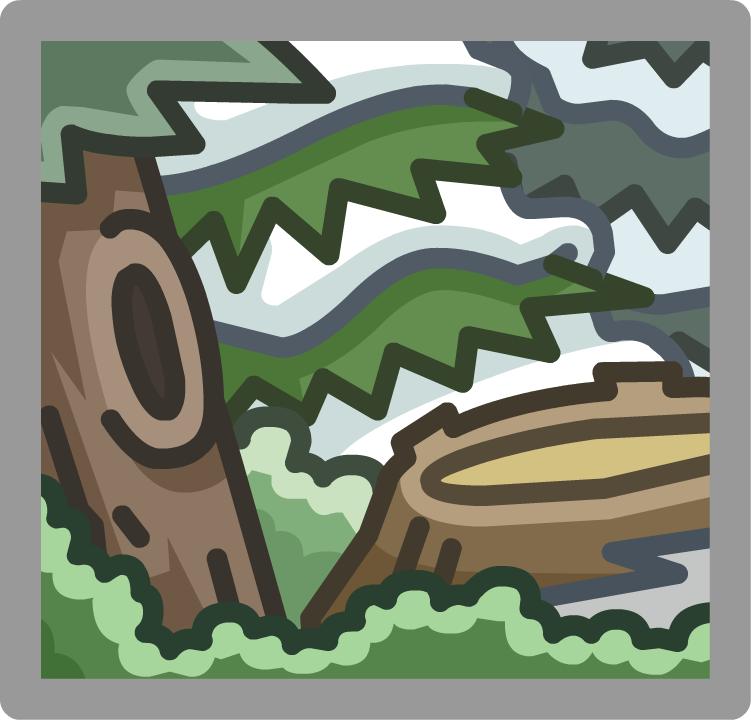 Bosque (ubicación)