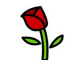Pin de Tulipán