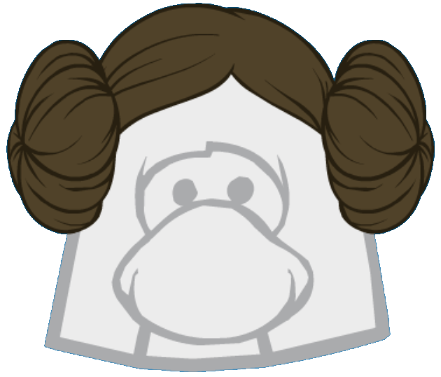 Peinado de Princesa Leia