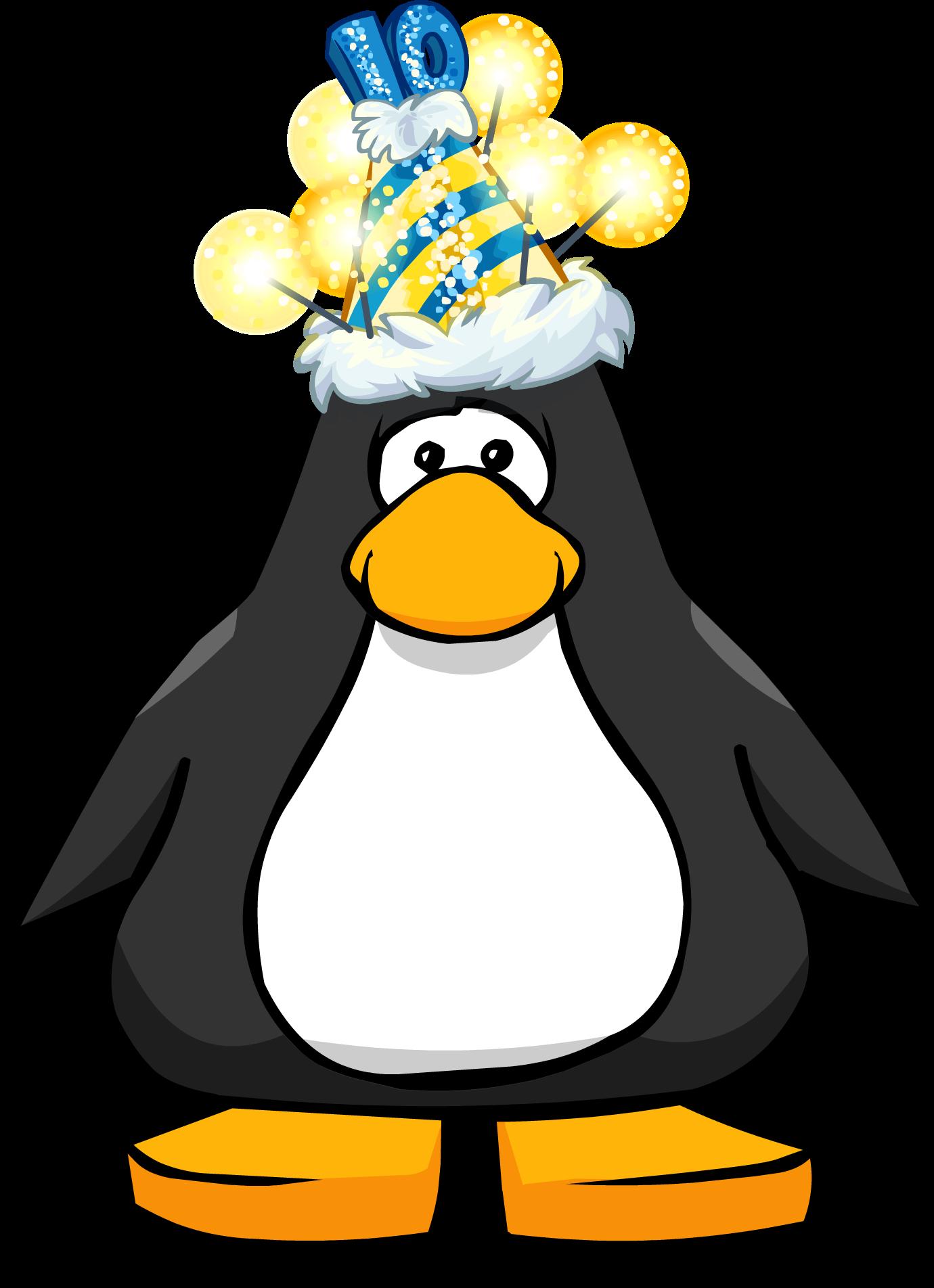10th Anniversary Hat