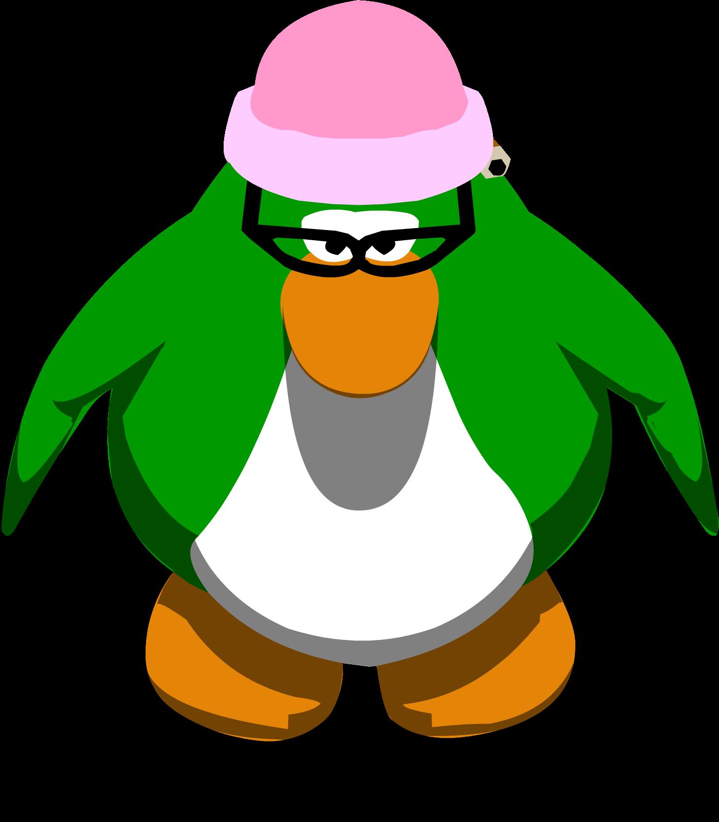 Aunt Arctic's Hat