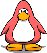 Peach Penguin Card