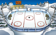 Ice Rink 2008