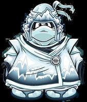 Snow Ninja Player Card.png