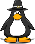 Pilgrim Hat on a Player Card