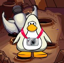 Pingu Rares.png