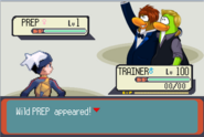 Pokemon Battle prep
