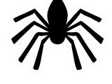 Pin de Araña