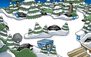Puffle Party 2012 construction Forest