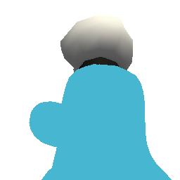 Donald's Sailor Hat