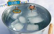 Iceberg 10mo aniversario
