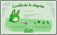 19.Conejo Verde