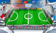 SoccerPitchSports8
