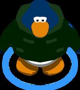 Abrigo de Invierno Verde juego