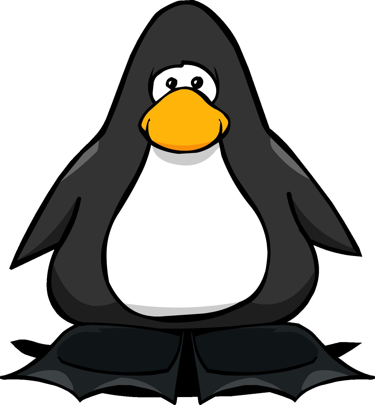 Black Flippers