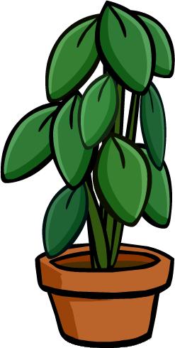 Planta de Interior Grande