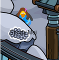 http://clubpenguin.wikia