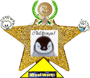 3rd Place, Super CP Artistic Contest