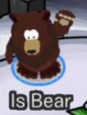 Is Bear