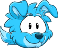 Puffle 2014 Transformation Player Card Blue Border Collie