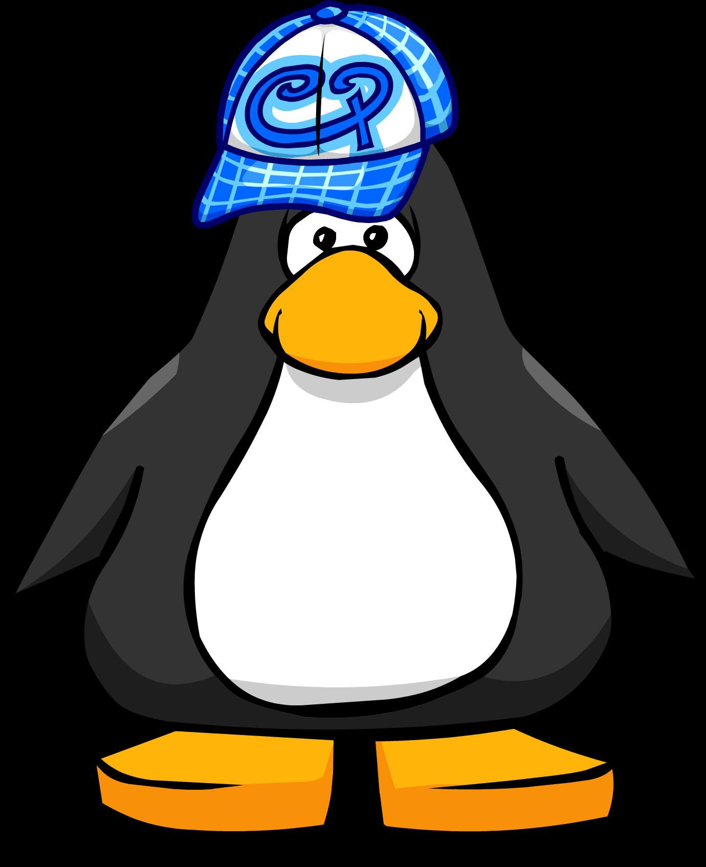 Blue Skater Hat