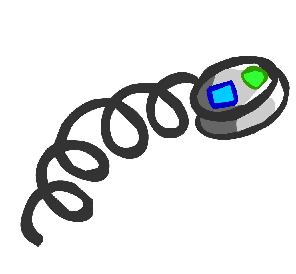 Auricular de la EPF