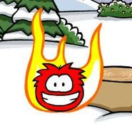 Puffle-on-fire