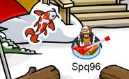 Koi Fish pin location