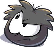 News 420 Featured More Black Puffle